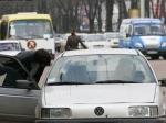 Под арестом автомобили нелегальных перевозчиков