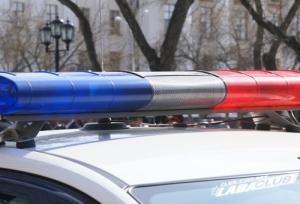 В Пинске пьяного водителя инспекторы остановили лишь выстрелами