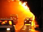 Жара может ухудшить самочувствие водителей: советы ГАИ